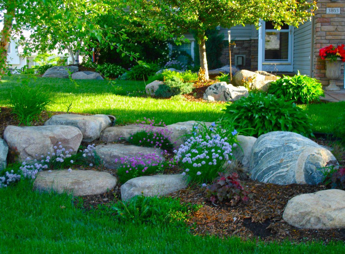 Boulder Backyard Landscape Design Ideas for Maximum Privacy