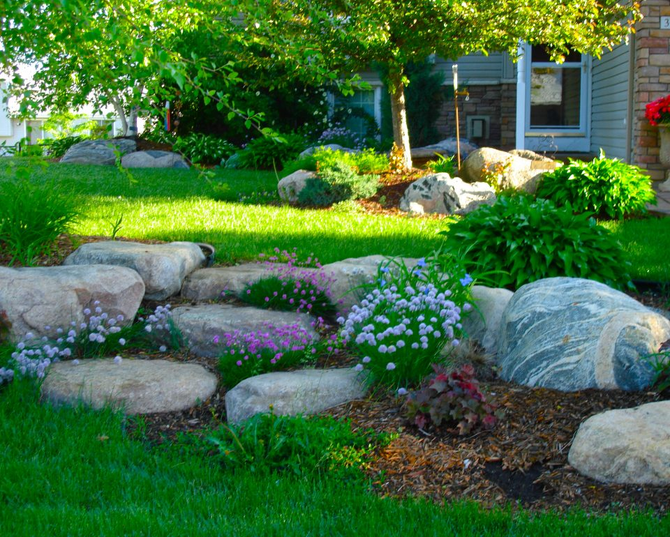 Boulder Backyard Landscape Design Ideas for Maximum Privacy