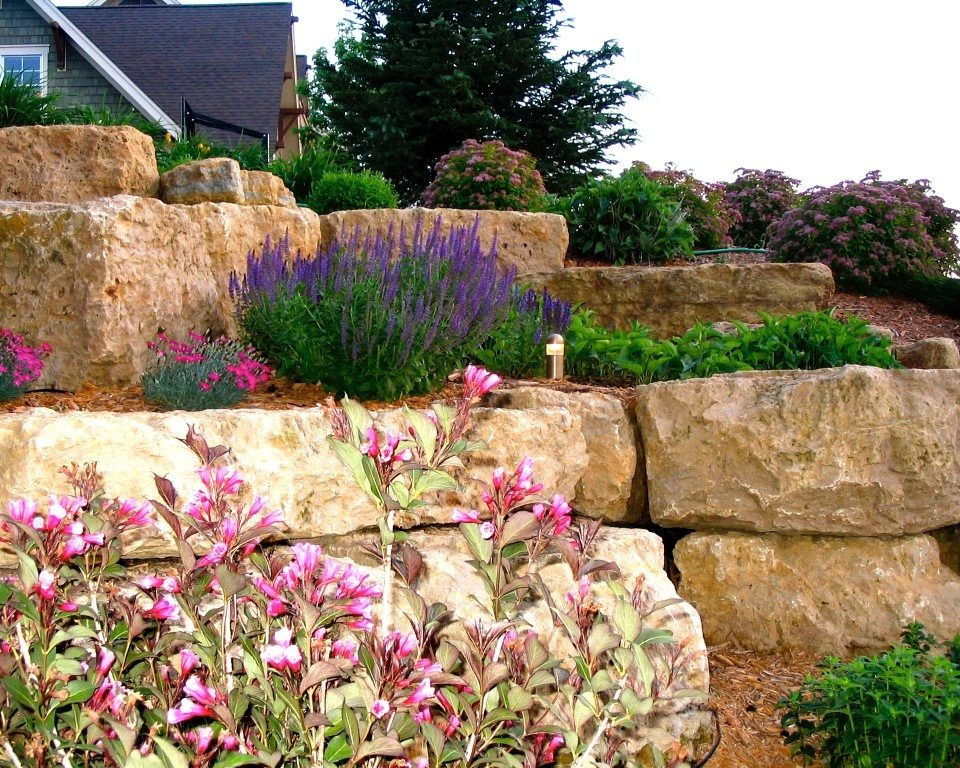 Planting for Pollinators: Butterflies and Bees Abound
